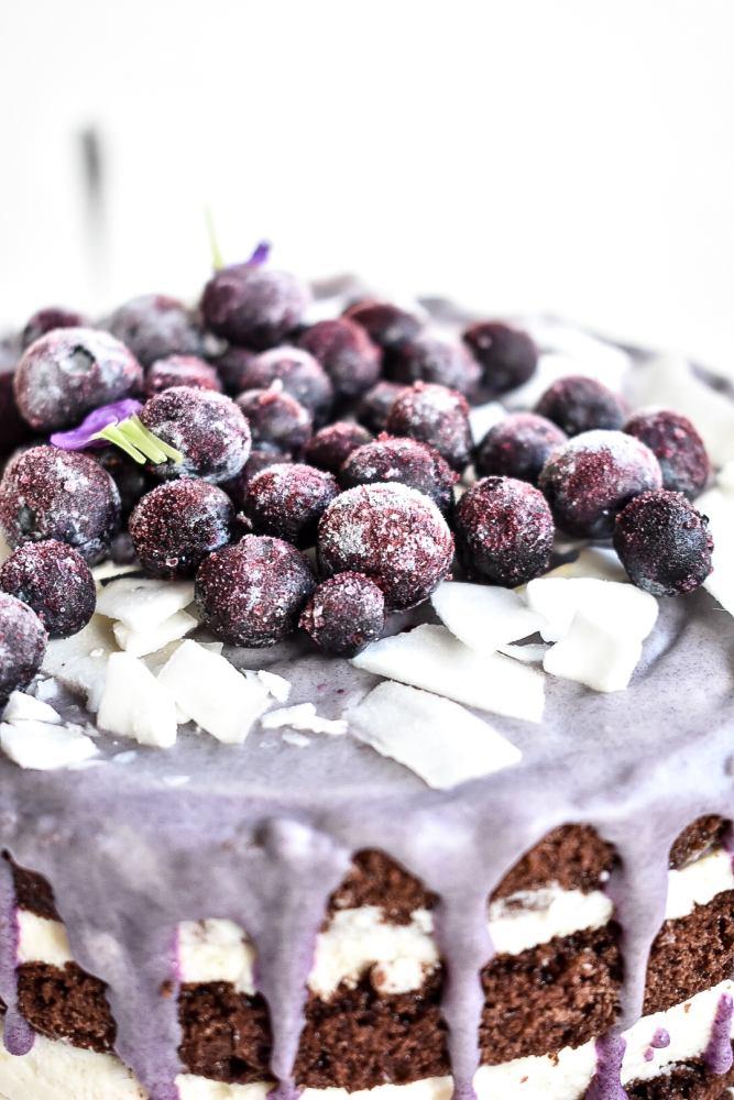 Blaubeer Schoko Torte mit Kokos